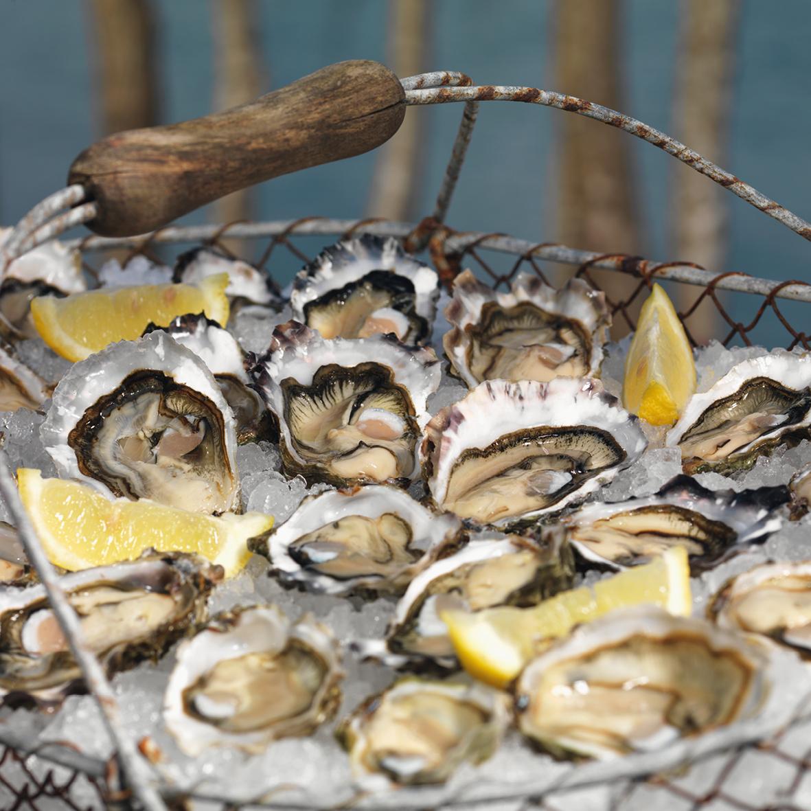 Arcachon Cap Ferret Oysters