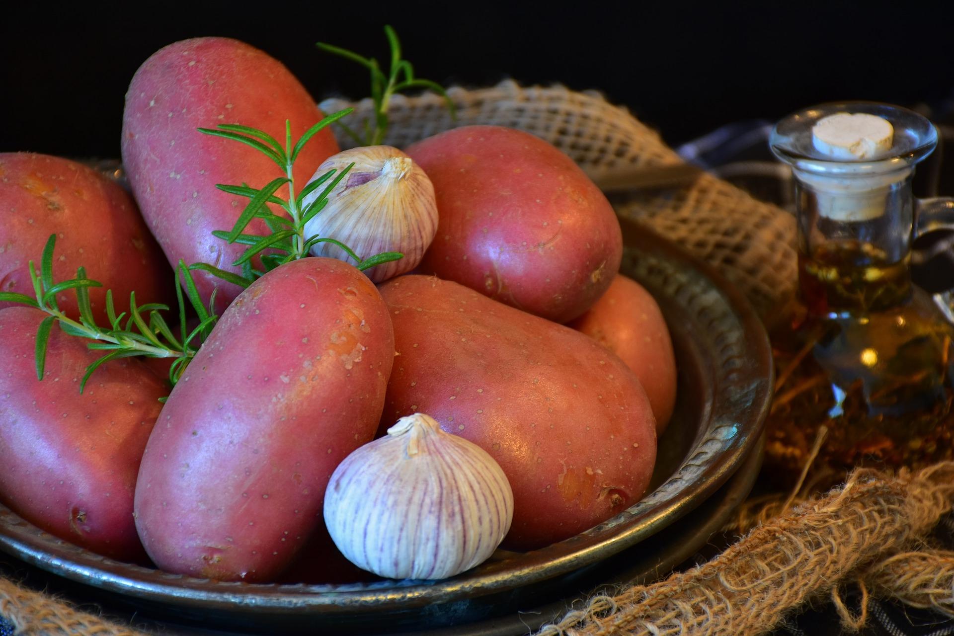 Pomme de terre du Limousin