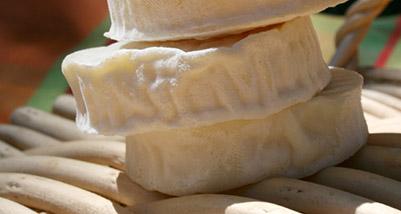 Salade de cabécou du Périgord, cresson et huile de noix : délice et santé dans l'assiette
