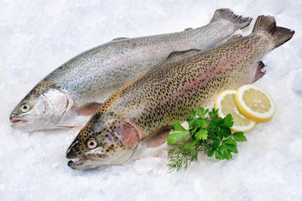Trout from the Basque country